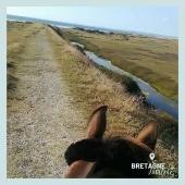 #MYBESTRIDINGPLACE 💙  Continuons à présent notre escapade dans le Finistère, sur un chemin aux confins de la mer…  📍 Finistère, Bretagne 📸 @aelaquiniou     #mybestridingplace #baladeacheval #finistere #bretagne #bretagnetourisme #acheval #randonneeequestre