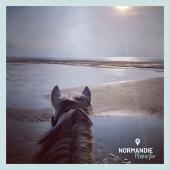 #MYBESTRIDINGPLACE 💙  Aujourd'hui, c'est Pauline qui nous présente l'un de ses spots préférés : direction Carolles-Plage 🥰 On adore ces dégradés de sable et d'eau salée! 🌊   📍Manche, Normandie 📸 @pauline_nvx   📩 Toi aussi participe à notre grande randonnée virtuelle en nous envoyant ta photo par message!🤩  #mybestridingplace #baladeacheval #normandie #manche #acheval #randonneeequestre #normandietourisme #carollesplage